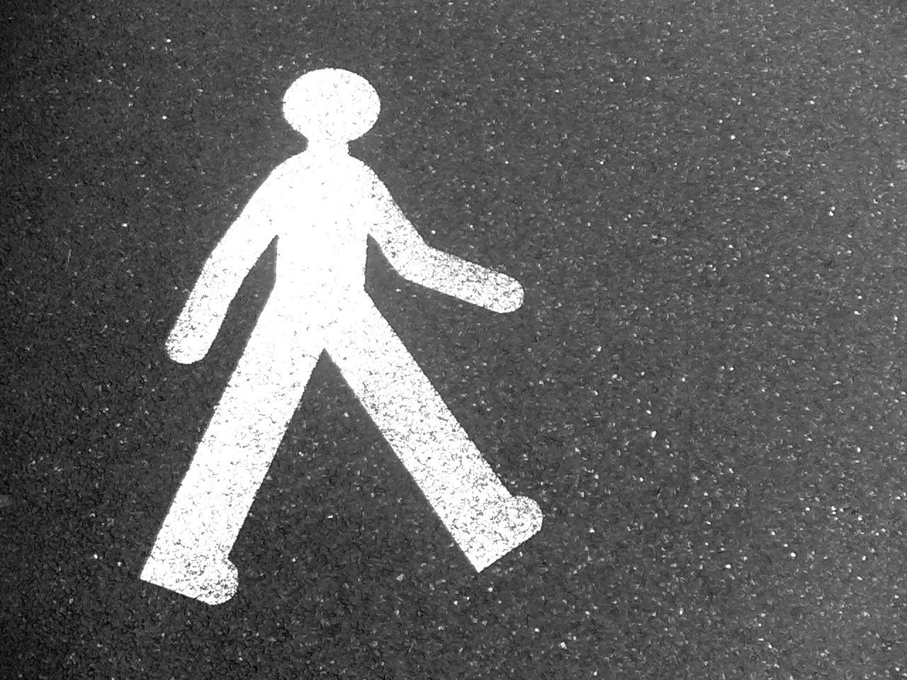 caminando_-_walking_-_en_suiza_-_13082006006