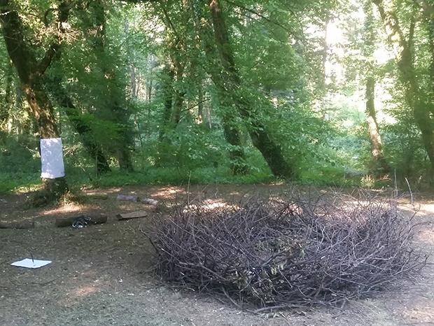 BTTT nid